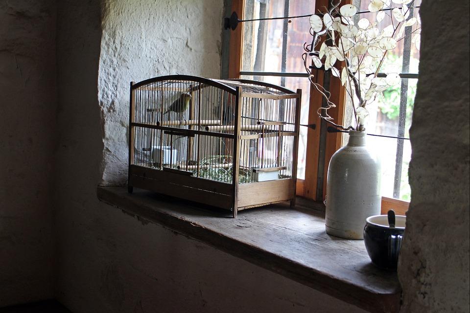 鳥かごのある窓際