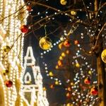 運命数から見る12月の運勢:数霊占術