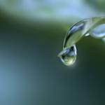 【夢占い】夢の中で雨が降る意味は?傘や夕立など雨の夢7選