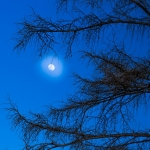 【夢占い】心霊現象の夢の意味とは?心霊現象の夢に関する8選を紹介!